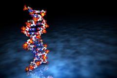 het 3D Teruggeven van DNA-Molecules op Blauwe Oppervlakte Royalty-vrije Stock Foto's