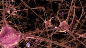 het 3D teruggeven van een netwerk van neuronencellen en synapsen in de hersenen waardoor de elektroimpulsen en de lossingen overg vector illustratie
