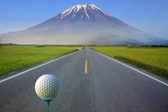 het 3d teruggeven van Golfbal op T-stuk over vage groen Stock Fotografie