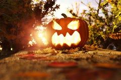 het 3d teruggeven van Halloween-hefboom-o-lantaarn op de herfstbladeren bij foo Stock Fotografie