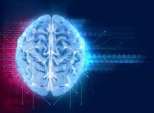het 3d teruggeven van menselijke hersenen op technologieachtergrond Stock Afbeeldingen