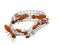 het 3d teruggeven van mieren die op een oneindigheidscijfer lopen die op witte achtergrond wordt geïsoleerd stock illustratie