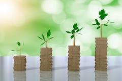het 3D teruggeven van stapels van muntstukken die bomen kweken Royalty-vrije Stock Afbeelding