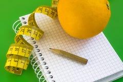 Het dagboek van het dieet. Stock Fotografie