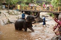 Het dagelijkse bad van de olifant Stock Foto