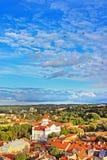 Het dak bedekt Kathedraal van Theotokos in Vilnius stock fotografie