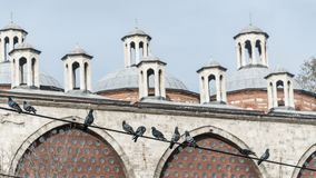 Het dak en de architectuur van de ottomanestijl met vogels in voorgrond, Istanboel, Turkije Stock Afbeeldingen