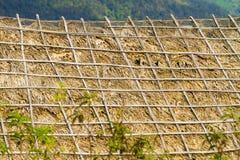 Het dak van het huis op de berg met stro en takken wordt behandeld die stock foto