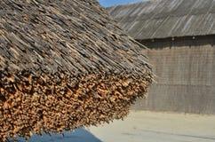 Het dak van rietstammen Royalty-vrije Stock Foto