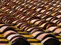 Het dakdetail van de tegel Stock Foto's