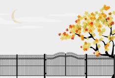 Het dalende park van het de herfstverlof Royalty-vrije Stock Foto's