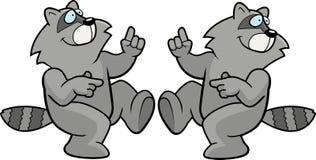 Het Dansen van de wasbeer Stock Afbeeldingen