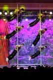 Het Dansen van Pool Stock Foto's