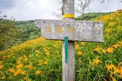 Het daylily hellingsoriëntatiepunt Stock Afbeeldingen