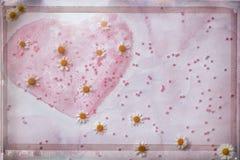 Het de Dagconcept van Valentine ` s, roze abstract hand-drawn waterverfhart, verfraaide met parels en verse kamille imitatie Stock Afbeeldingen
