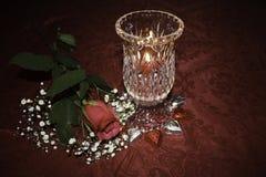 Het de Dagkaarslicht van Valentine ` s en enige rood namen toe Royalty-vrije Stock Foto's