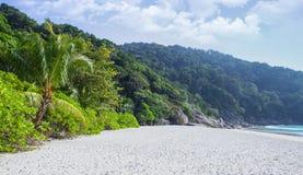 Het de groene wildernis en strand van Paradise keerkringen Zandkust, blauwe lagune en vele installaties royalty-vrije stock afbeeldingen