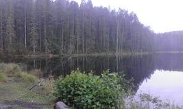 Het de hemelvallen van de avond van Zweden stock foto