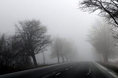 Het de herfstlandschap op een mistige ochtend Stock Afbeeldingen