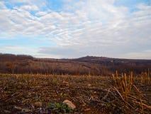 Het de herfstlandschap van het geoogste gebied stock afbeeldingen