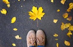 Het de herfstseizoen, voeten in schoenen is op asfalt waar de bladeren liggen Royalty-vrije Stock Afbeelding