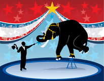 Het de hoofdolifant en circus van de ring Royalty-vrije Stock Afbeelding