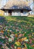 Het de houten hut van het land en gras van de de herfsttuin dichtbij Royalty-vrije Stock Foto's
