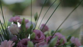 Het de huwelijksstoelen en Gebied openbaren Reknadruk stock videobeelden