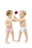 Het de jongensheden van de baby nam bloem tot babymeisje toe. Stock Foto's
