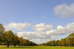 Het de kalkweg en Wit brengen, Dichtbegroeid Park, Middlesex, het UK onder royalty-vrije stock foto
