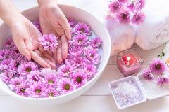 Het de kuuroordbehandeling en product voor vrouwelijke voeten en manicure nails spa met roze bloem en rotssteen, exemplaarruimte, royalty-vrije stock afbeeldingen
