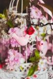 Het de lentedecor Royalty-vrije Stock Afbeelding