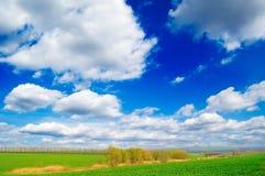 Het de lentelandschap. Royalty-vrije Stock Foto's