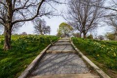Het de lentelandschap van pattersonpark met bloemen in Baltimore brengt in de war stock fotografie