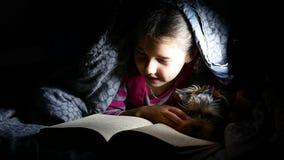 Het de lezingsmeisje van het tienerkind leest boekhond bij nacht die met flitslicht onder een deken liggen stock videobeelden