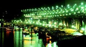 Het de nachtleven van de rivier stock foto's