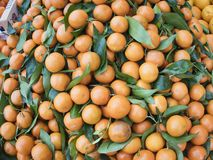 Het de sinaasappelencitrusvruchten en snoepje zijn populair en nuttig lichaam voor verkoop op de markt royalty-vrije stock afbeelding