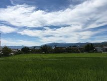 Het de toneelmening en padieveld van de panoramaberg in Kyoto in zomer royalty-vrije stock fotografie