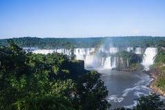 Het de watervallen en bos van Iguazu royalty-vrije stock foto's