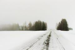 Het de winterbos heeft zich in mist geworpen Stock Afbeeldingen