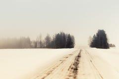 Het de winterbos heeft zich in mist geworpen Stock Fotografie