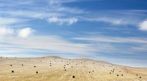 Het de winterlandschap met een schoongemaakt landbouwgebied met een hooi rolt en eerste sneeuw onder donkerblauwe hemel met spect royalty-vrije stock foto's