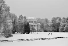 In het de winterpark stock afbeeldingen