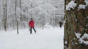 Het de winterpark met sneeuw behandelde bomen, een familie met babywandelwagen die in het park lopen stock videobeelden