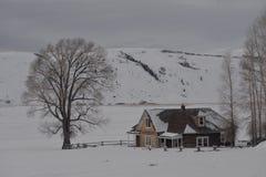 Het de winterweer bedekt het Nationale Elandentoevluchtsoord in Jackson Hole, Wyoming Stock Foto