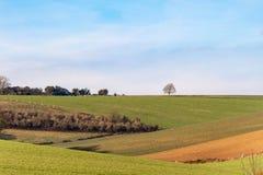 Het de winterzuiden verslaat Landschap stock foto