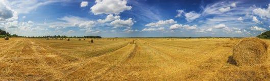 Het de zomergebied met stro maait bij daglicht panoramisch schot royalty-vrije stock foto's