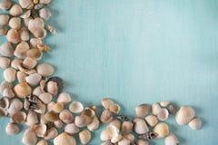 Het de zomerkader met zeeschelpen op een turkoois schilderde houten Royalty-vrije Stock Afbeelding