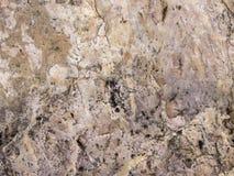 Het decor grunge textuur of achtergrond van de steenrots stock fotografie