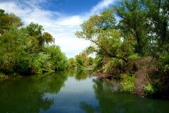 Het deltalandschap van Donau Royalty-vrije Stock Foto